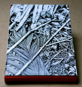 Illustrations on the cover by Aaron Horkey